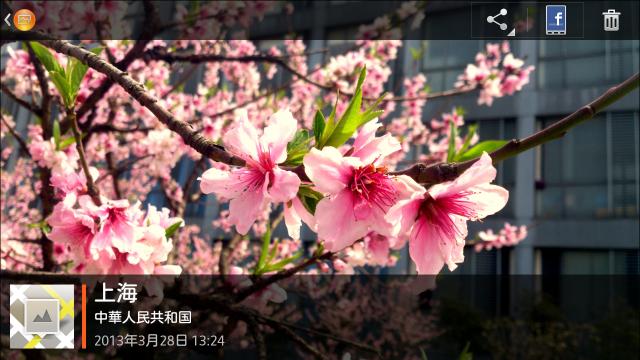 单击屏幕以显示照片简略信息